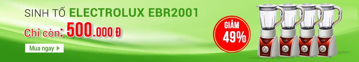 SINH TỐ ELECTROLUX EBR2001