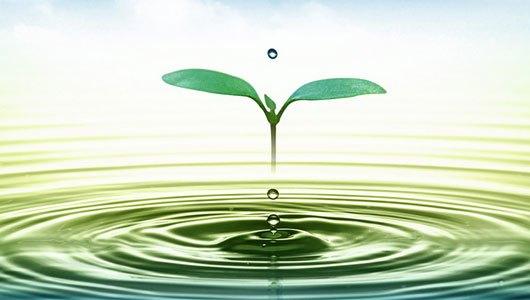Máy giặt Samsung WA82H4000HA tiết kiệm nước