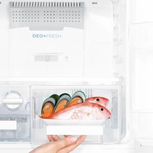 Tủ lạnh Electrolux ETB2300PE-RVN hệ thống hút và khử các mùi lan tỏakiểm soát mùi tốt hơn
