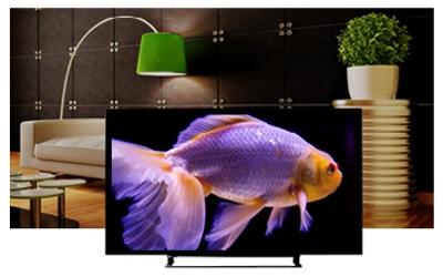 Mua TV Led Toshiba 50L2550VN 50 inch chính hãng tại Nguyễn Kim