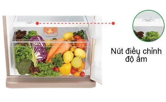 Tủ lạnh loại nào tốt? Tủ lạnh Mitsubishi Electric MR-FV32EJ 274 lít
