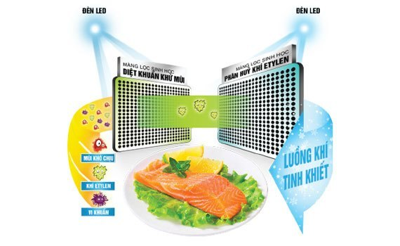 Tủ lạnh Toshiba GR-WG66VDAZ 600 lít xanh có hệ thống khử mùi, diệt khuẩn tốt