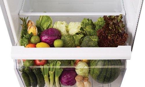 Tủ lạnh Toshiba GR-T41VUBZ (N1) có diện tích lưu trữ tăng khoảng 60%
